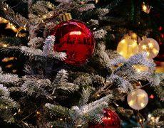 Weihnachten unter dem Wohlfühlstern von TUI Mein Schiff