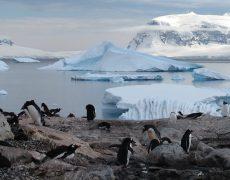 Super Angebot für Alleinreisende bei Hurtigruten